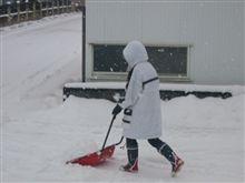 今日は朝から雪で…