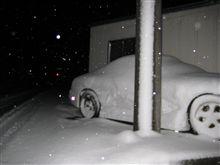 降 り し き る 雪