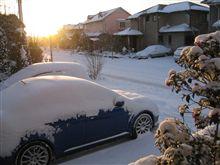 雪が積もってます・・・