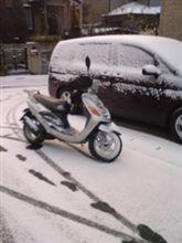 雪の朝は悩ましい