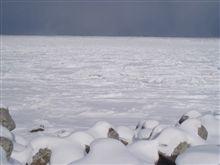 海は白かった
