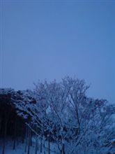 Silent Blue--氷室京介