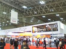 Tokyo Motor Show (2)