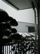 また大雪…