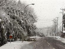 雪のため車線規制?