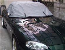 久々に洗車を