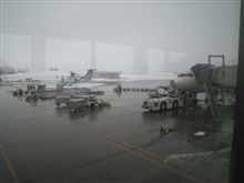 北海道テストより帰還しました