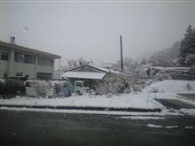 大雪だよ~(((゜д゜;)))