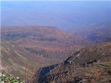 山へ行きたくなったので行ってきました