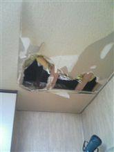 天井破壊!!