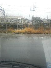 冷たい雨が降ってます。