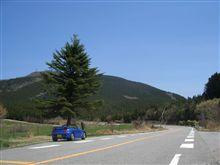茶臼山高原道路 無料化ドライブ