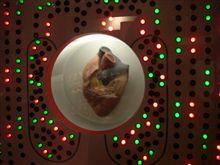 ローコストで行きそこねた…[54] 多摩六都科学館