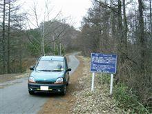 千代田湖枯木林道