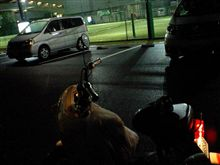 蹴球:0805-5 SALU川崎でフットサル・Sweet Tenの事