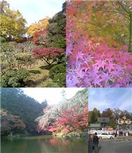 成田山へ行ってきました