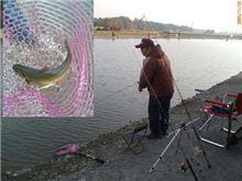 増井養魚場へ釣り見学