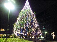 クリスマス色が強くなってきましたね。