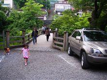 紫陽花とオオムラサキを見に行こう!