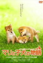 【今日の1本】 マリと子犬の物語