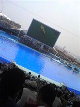 名古屋港水族館♪