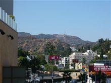 こんにちわ~ハリウッド~!