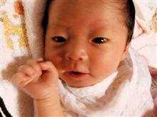 赤ちゃんが生まれました!