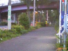 風物詩!(´∇`)【28.July.2008】