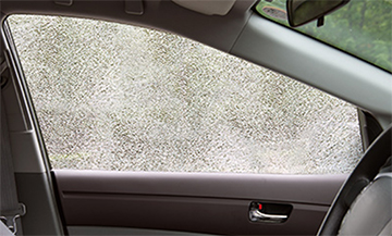 ガラスの飛散防止効果