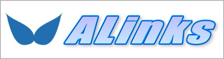 高品質なカー用品専門店 ALinks