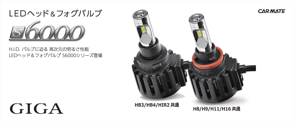 LEDヘッド&フォグバルブS6000