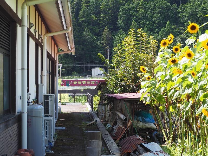 洲原ひまわりの里 長良川鉄道
