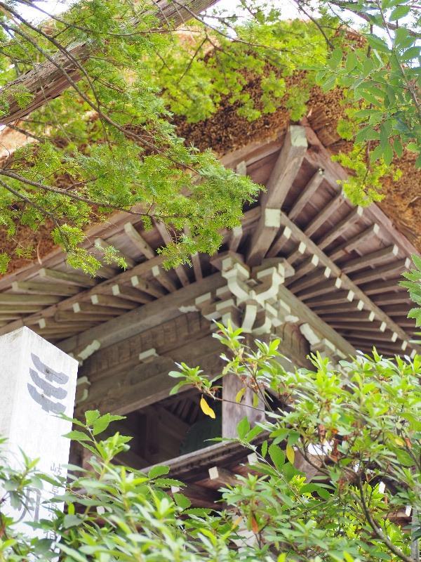 明善寺 鐘楼門