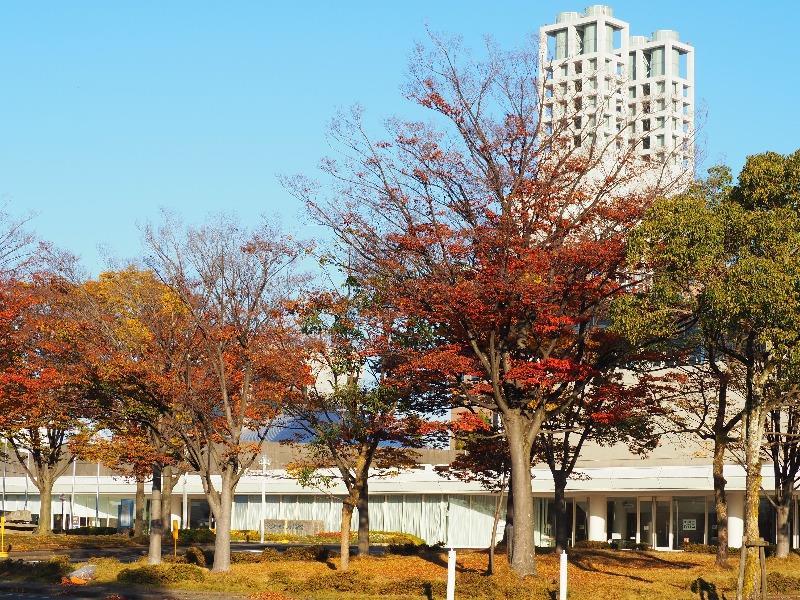 大垣市総合体育館……からソフトピアジャパン センタービル(1)