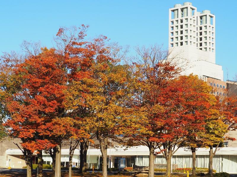 大垣市総合体育館……からソフトピアジャパン センタービル(2)
