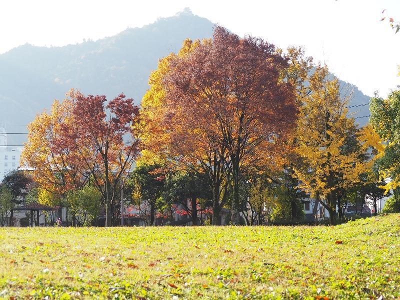 長良公園……から金華山