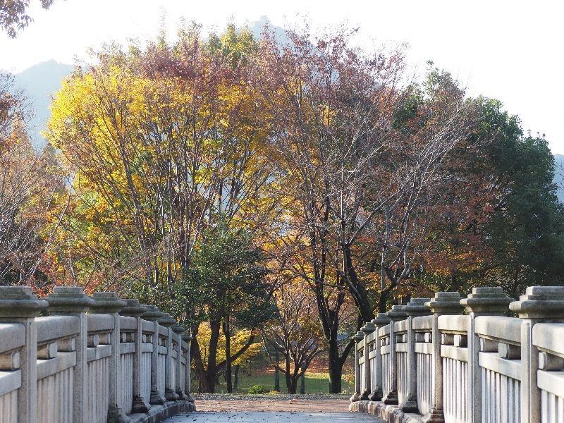 長良公園 連絡橋……から金華山