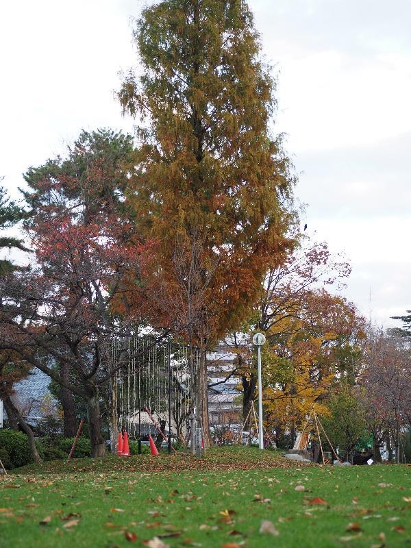 大垣公園(3)