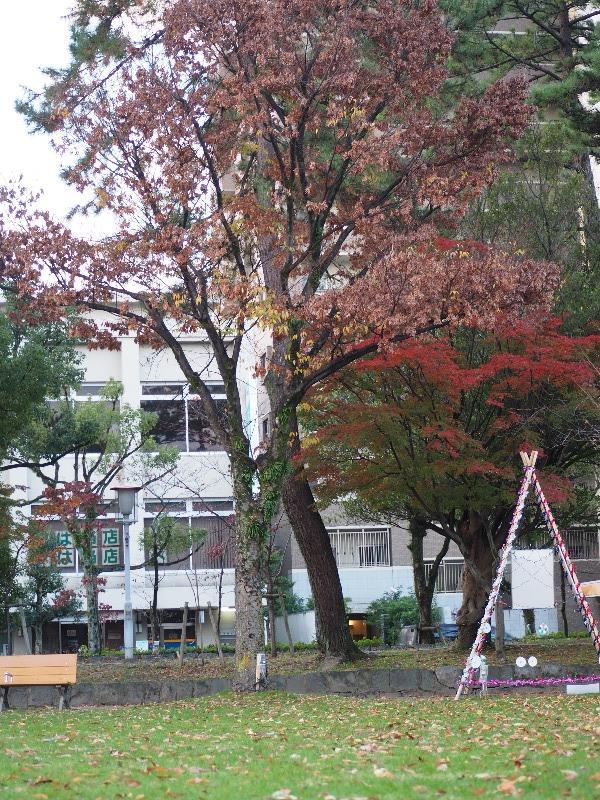 大垣公園(4)