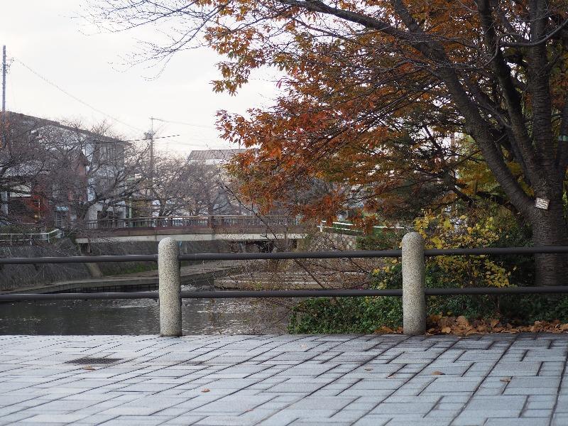 四季の路 四季の広場……から美登鯉橋
