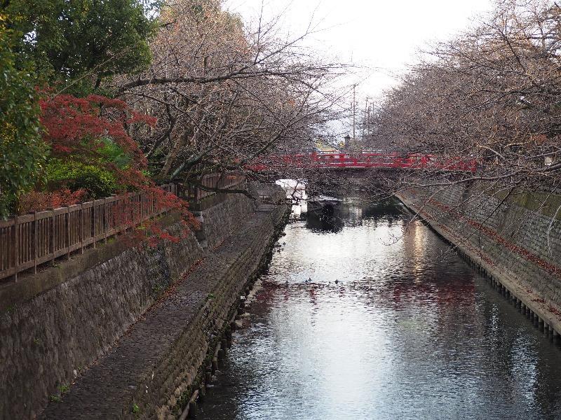 四季の路 貝殻橋……から住吉橋