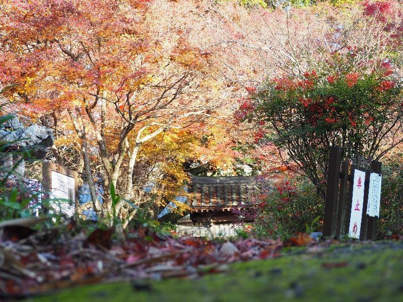 円興寺(3)