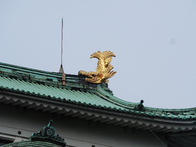 名古屋城 本丸から天守 しゃちほこ(2)
