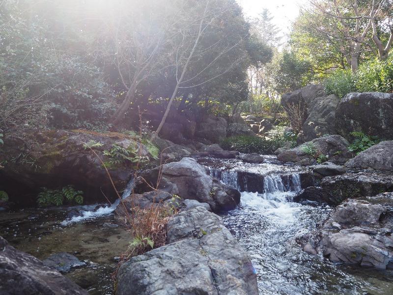 白鳥庭園 木曽橋