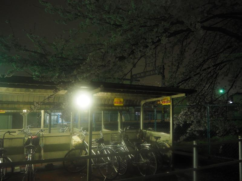 養老鉄道 北大垣駅 笠縫堤(1)