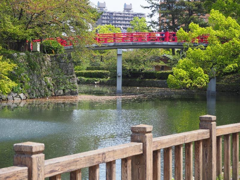 岡崎公園 五万石藤……から龍城堀・神橋