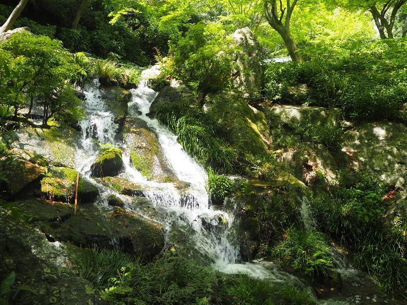 浜松城公園日本庭園 滑滝