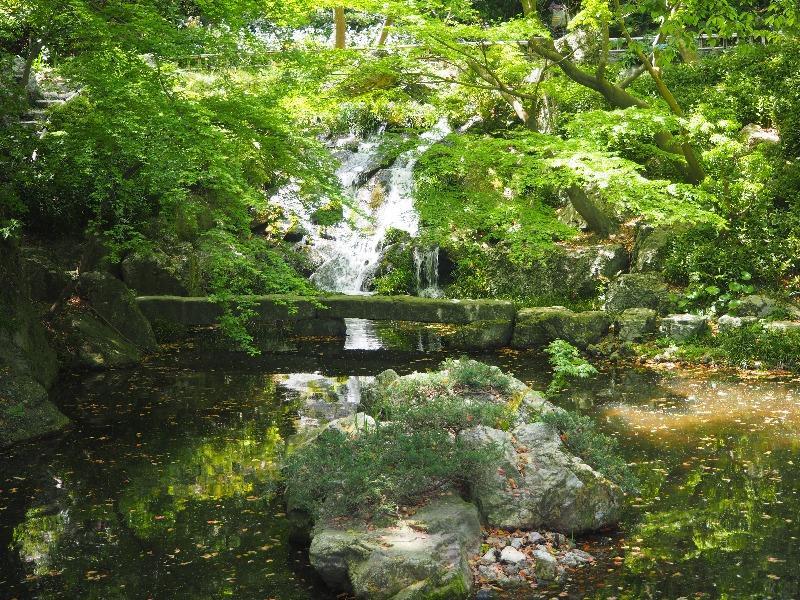 浜松城公園日本庭園 滑滝と石橋、池、島