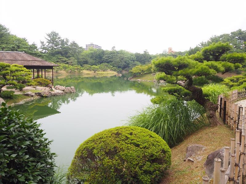 栗林公園 楓岸(1)