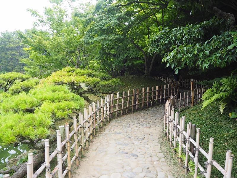 栗林公園 楓岸(2)